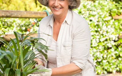 Physiotherapy and Gardening Advice