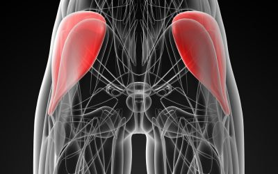 Injury blog: Gluteal tendinopathy